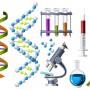 Генетические консультации и тесты в Израиле