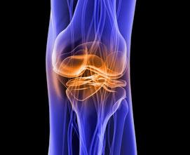 Восстановление хрящей коленного сустава